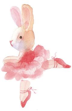 rabbit-r